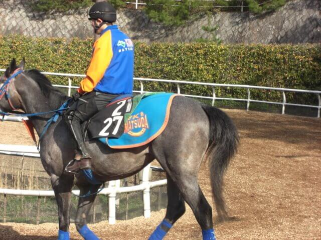 松国厩舎のスタッフジャンパー