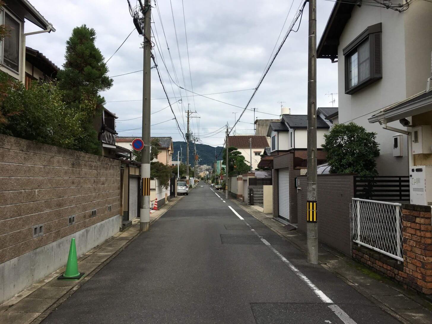 近所の調査地点の写真